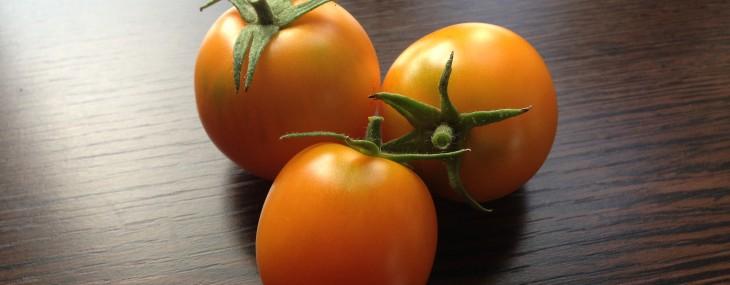 Goa gula tomater