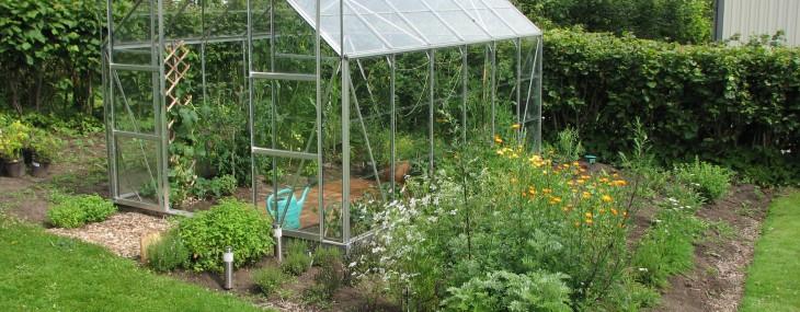 Egen växthus