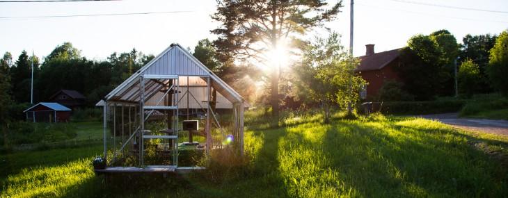 Det ekologiska växthuset genomförde en frivillig likvidation
